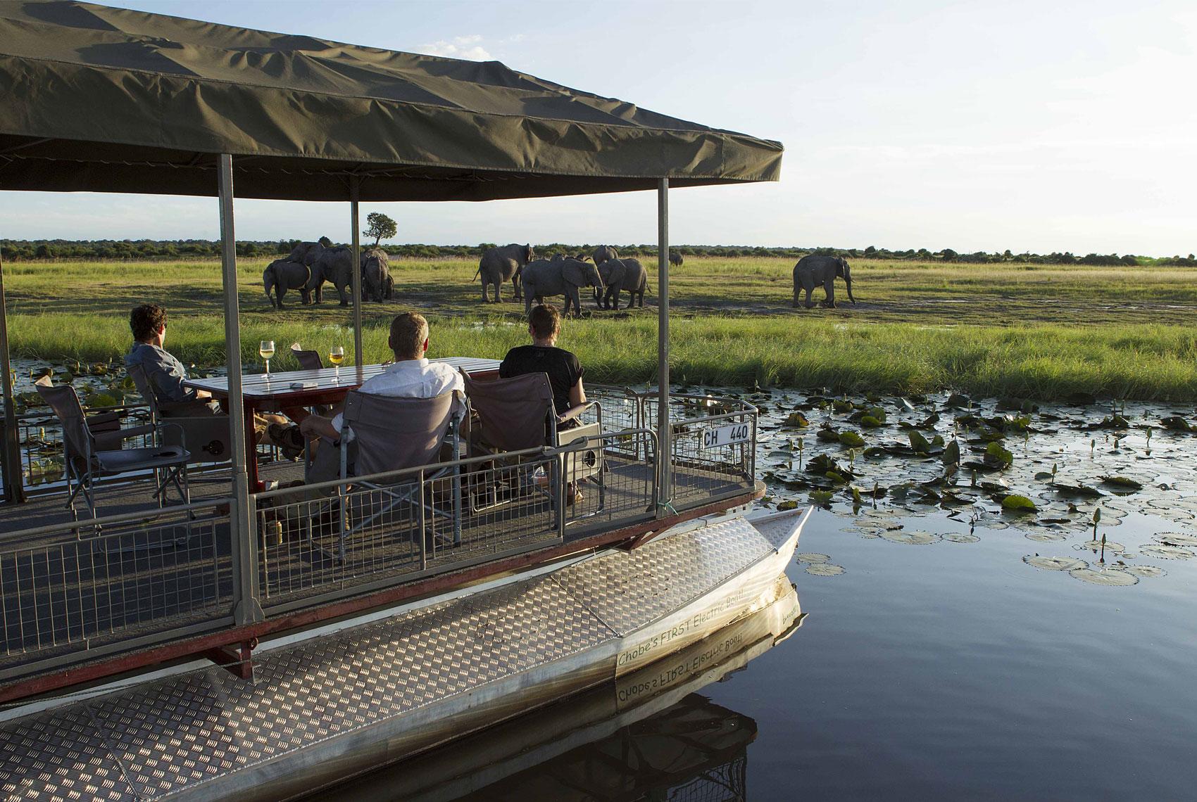 River safari on the Chobe River