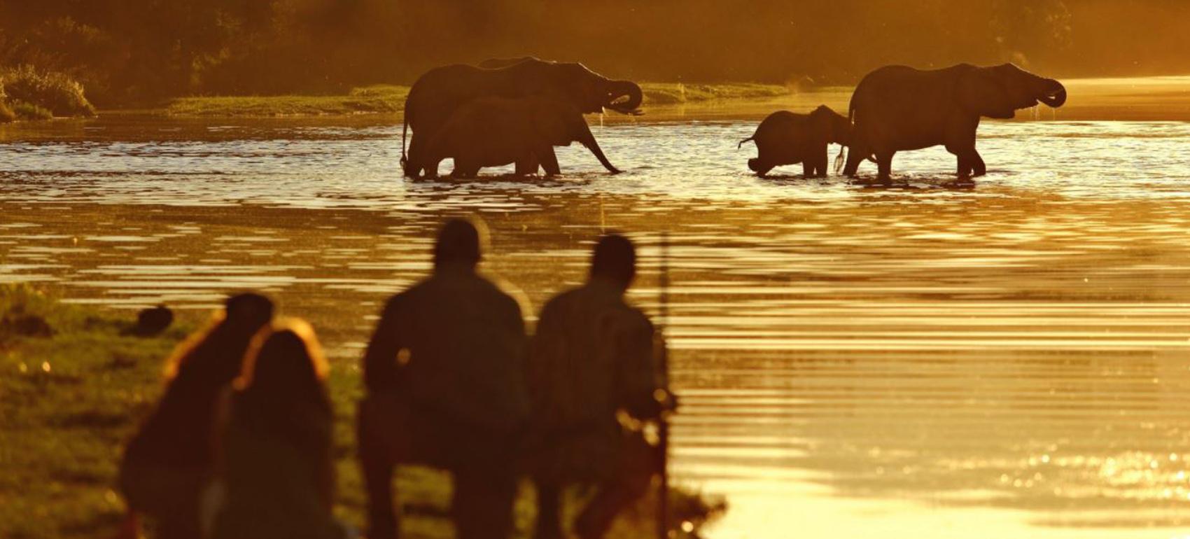 Chongwe_Safaris