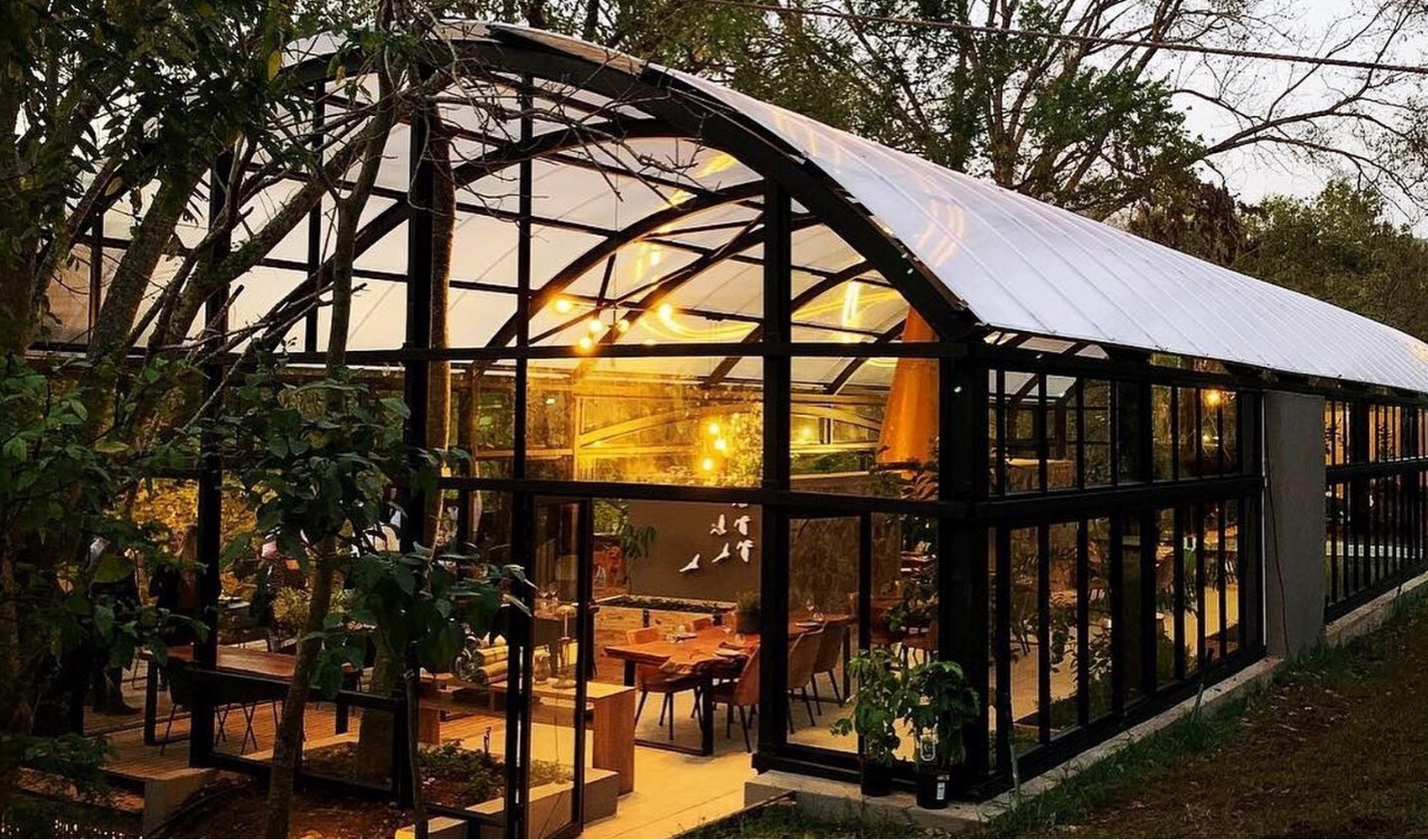 Summerfields_Rose-Cafe