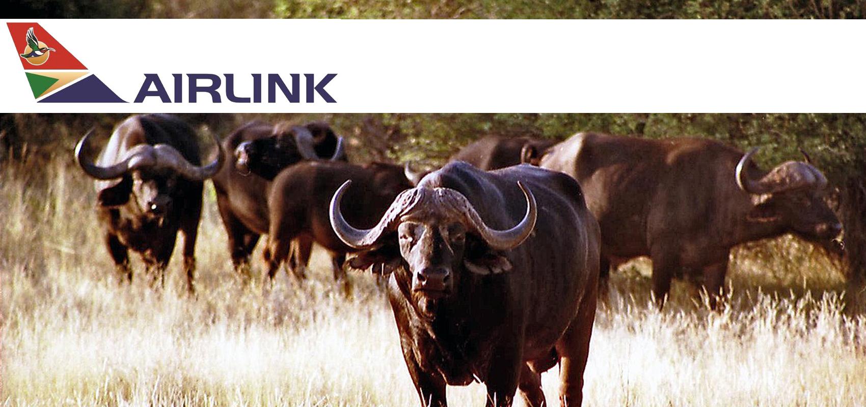 Airlink_flights_to_Hoedspruit