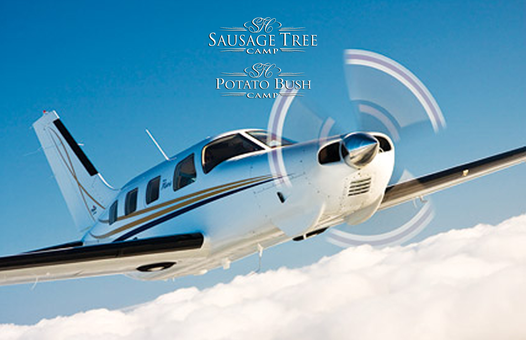 Sausage_Tree_Free_Flight-Specials-Product-Page
