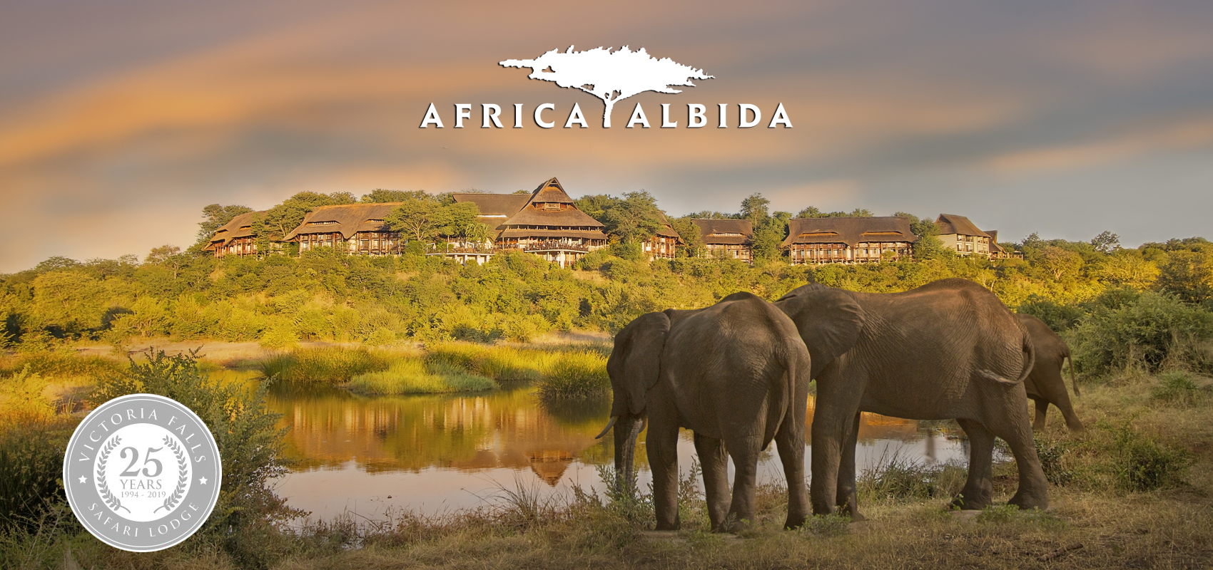 Africa_Albida-Specials-Product-Page